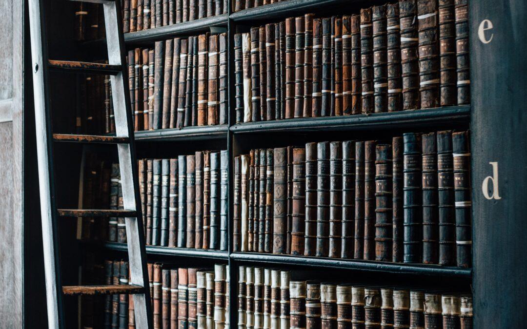 The Forbidden Bookshelf
